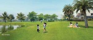 8 Acre Park